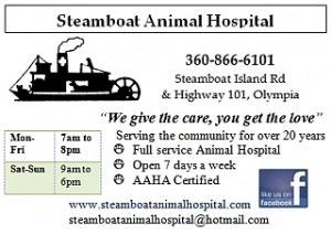 steamboatanimalhospital