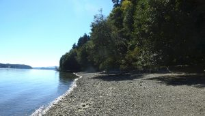 Beach at Schmidt Conservation Easement.