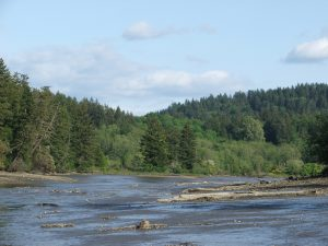 Mud Bay at Low Tide. Photo by Gale Hemmann, illustrating an article published June 2014, in ThurstonTalk.