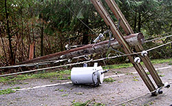 Downed Powerlines